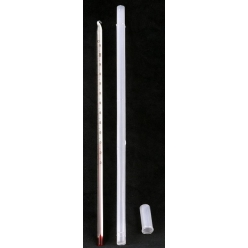 Thermometer - 30cm